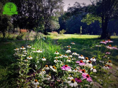 park Korczew